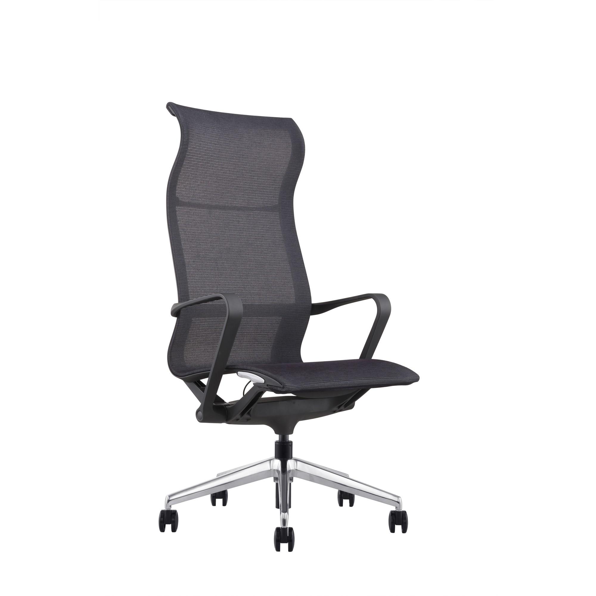 Hilo Series Ergonomic Office Chair High Back Mesh Chair – Hydraulic  Adjustable Height and Seat, Tilt Lock, Extensive Lumbar Support Mesh Desk  ...